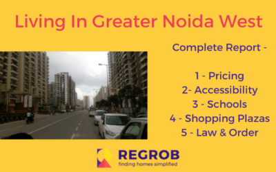 living in noida extension complete report