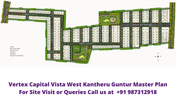 Vertex Capital Vista West Kantheru Guntur Master Plan