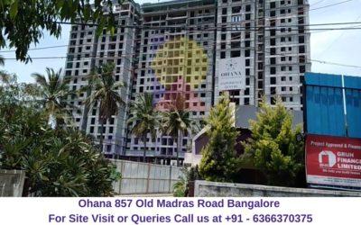 Ohana 857 Old Madras Road Bangalore