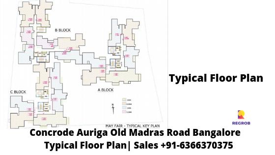 Concorde Auriga Typical Floor Plan
