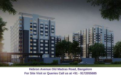 Hebron Avenue Old Madras Road, Bangalore Elevated