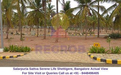 Salarpuria Sattva Serene Life Shettigere, Bangalore Actual View of Site