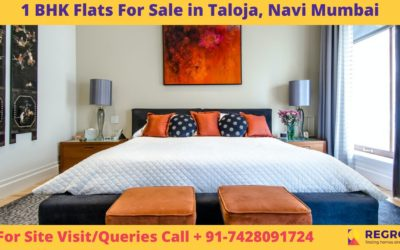1 BHK Flats in Taloja Navi Mumbai (1)