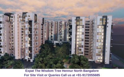 Expat The Wisdom Tree Hennur North Bangalore Elevated View