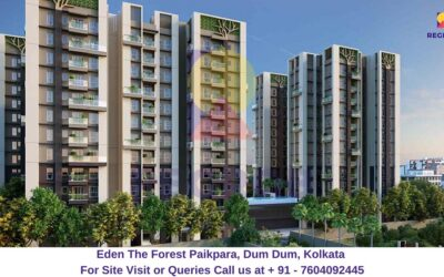 Eden The Forest Paikpara, Dum Dum, Kolkata Elevated View