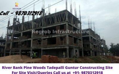 River Bank Pine Woods Tadepalli Vijayawada Constructing Site