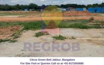 Citrus Green Belt Jakkur, Bangalore (1)