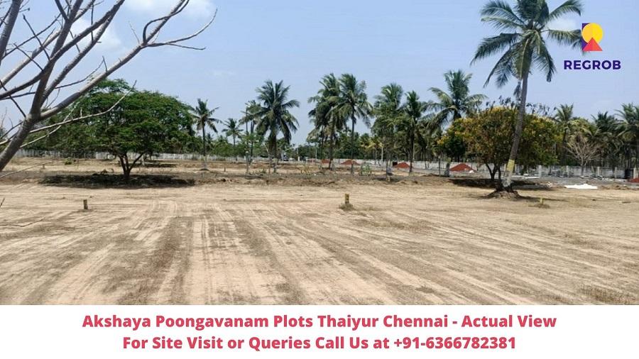 Akshaya Poongavanam Plots Thaiyur Chennai Actual View of Site (5)