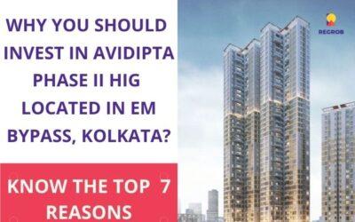 Avidipta Phase II HIG EM Bypass, Kolkata