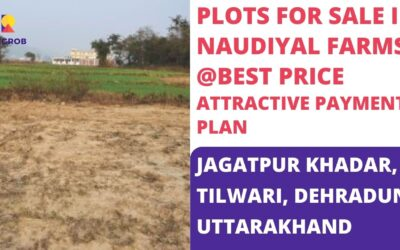 Naudiyal Farms Jagatpur Khadar, Tilwari Dehradun