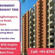 TOTAL ENVIRONMENT THE MAGIC FARAWAY TREE Kanakapura Road, Bangalore