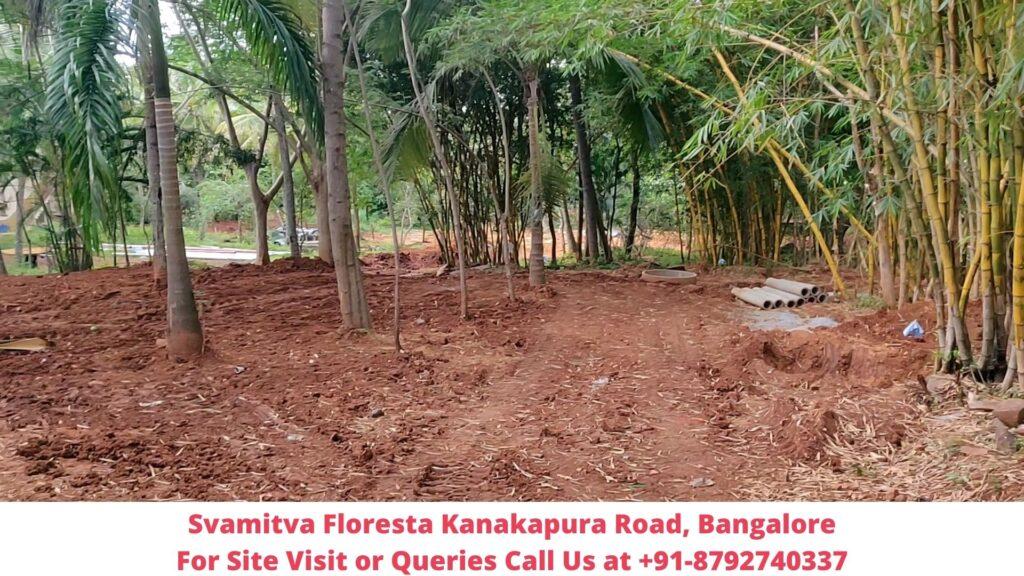 Svamitva Floresta Actual View